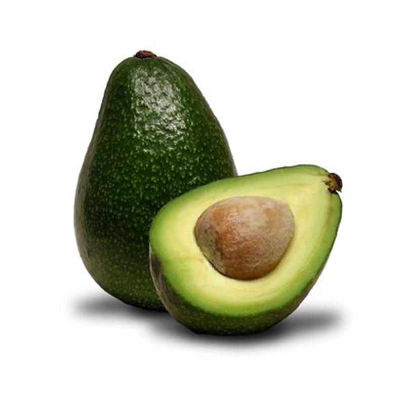 Avocado – 6 Count